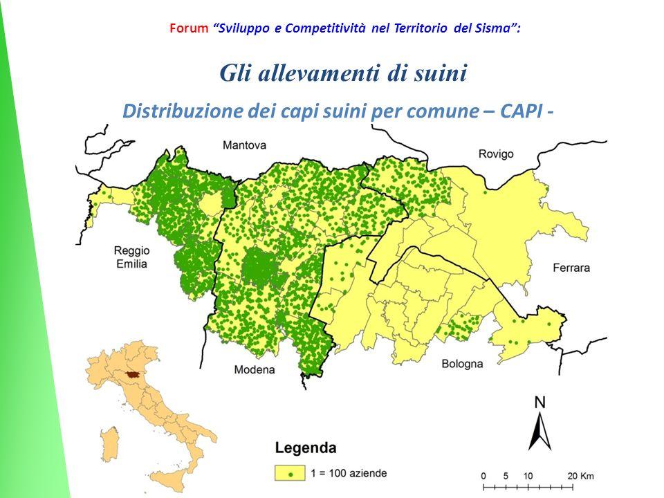 20 Forum Sviluppo e Competitività nel Territorio del Sisma: Distribuzione dei capi suini per comune – CAPI - Gli allevamenti di suini