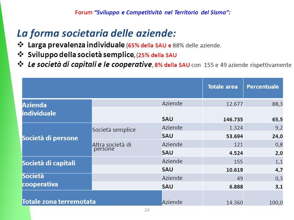 24 Forum Sviluppo e Competitività nel Territorio del Sisma: Totale areaPercentuale Azienda individuale Aziende 12.67788,3 SAU 146.73565,5 Società di p