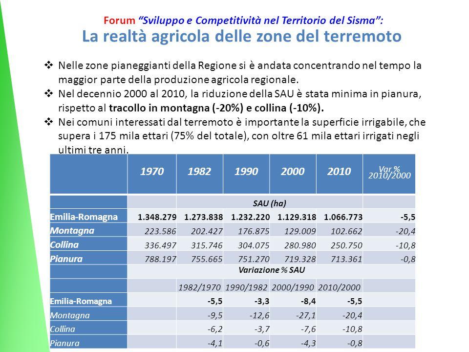 7 Forum Sviluppo e Competitività nel Territorio del Sisma: La realtà agricola delle zone del terremoto Nelle zone pianeggianti della Regione si è andata concentrando nel tempo la maggior parte della produzione agricola regionale.