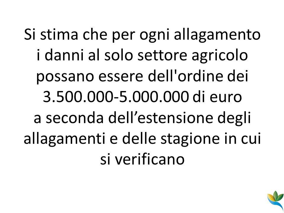Si stima che per ogni allagamento i danni al solo settore agricolo possano essere dell'ordine dei 3.500.000-5.000.000 di euro a seconda dellestensione