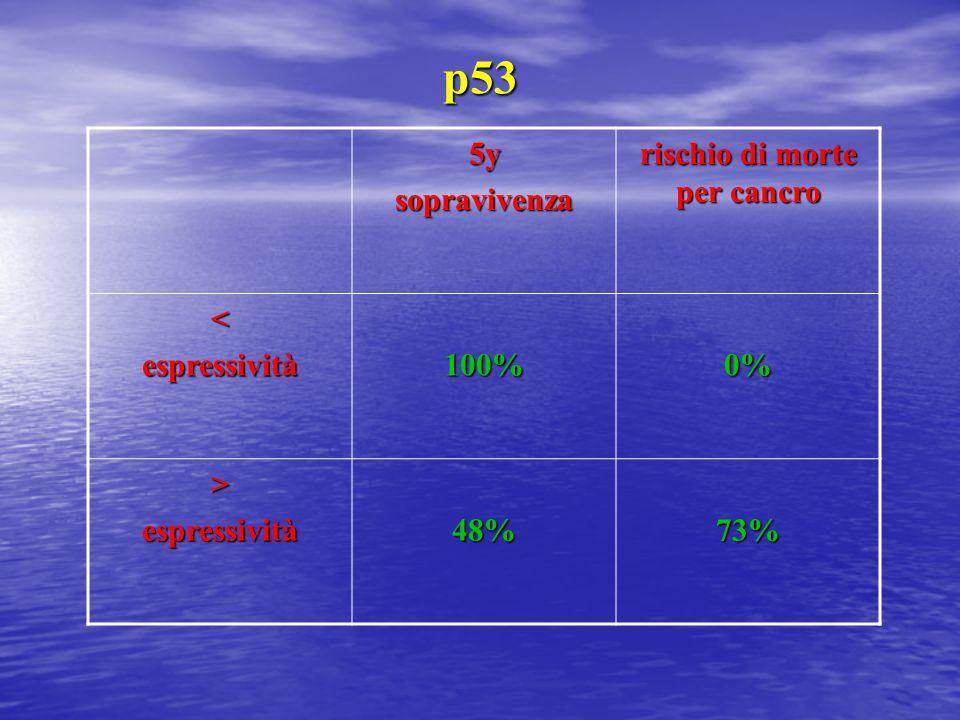 p53 5ysopravivenza rischio di morte per cancro <espressività100%0% >espressività48%73%