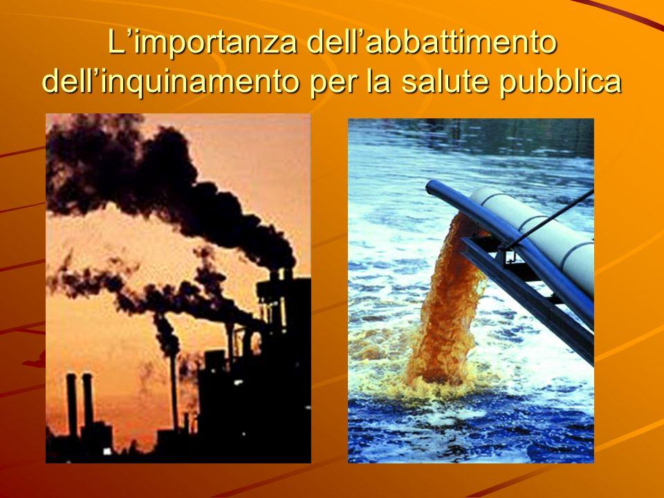 Limportanza dellabbattimento dellinquinamento per la salute pubblica