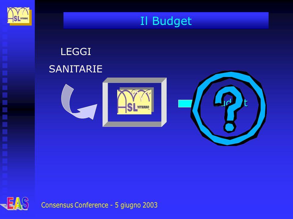 LEGGI SANITARIE Budget Il Budget