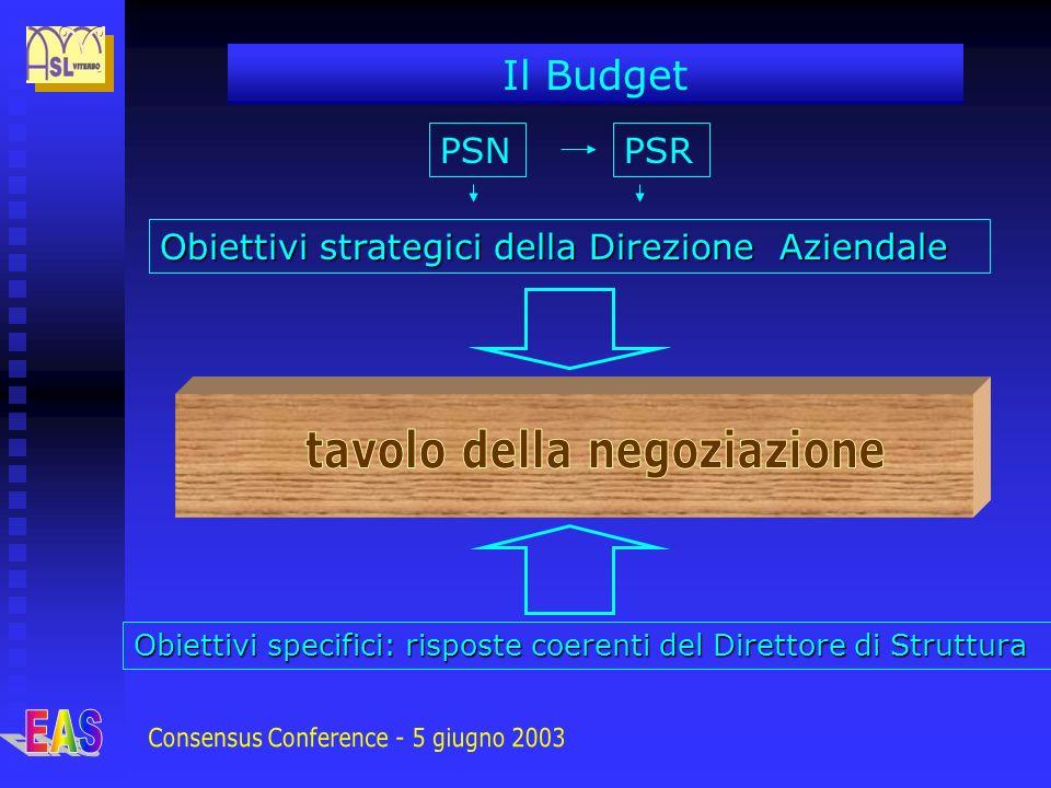 Il Budget Obiettivi strategici della Direzione Aziendale Obiettivi specifici: risposte coerenti del Direttore di Struttura PSNPSR