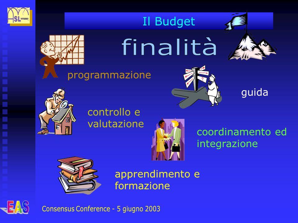 Il Budget programmazione guida controllo e valutazione coordinamento ed integrazione apprendimento e formazione