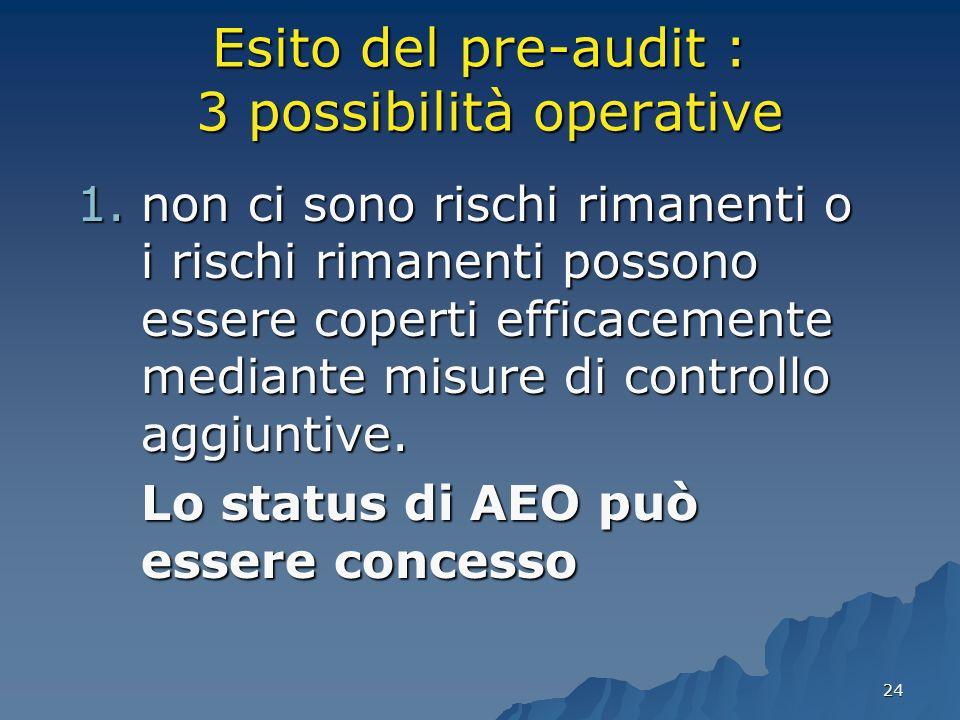 24 Esito del pre-audit : 3 possibilità operative 1.non ci sono rischi rimanenti o i rischi rimanenti possono essere coperti efficacemente mediante mis