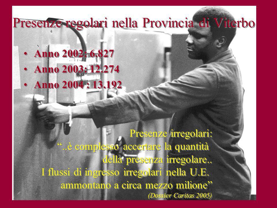 Presenze regolari nella Provincia di Viterbo Anno 2002: 6.827 Anno 2003: 12.274 Anno 2004 : 13.192 Anno 2002: 6.827 Anno 2003: 12.274 Anno 2004 : 13.1