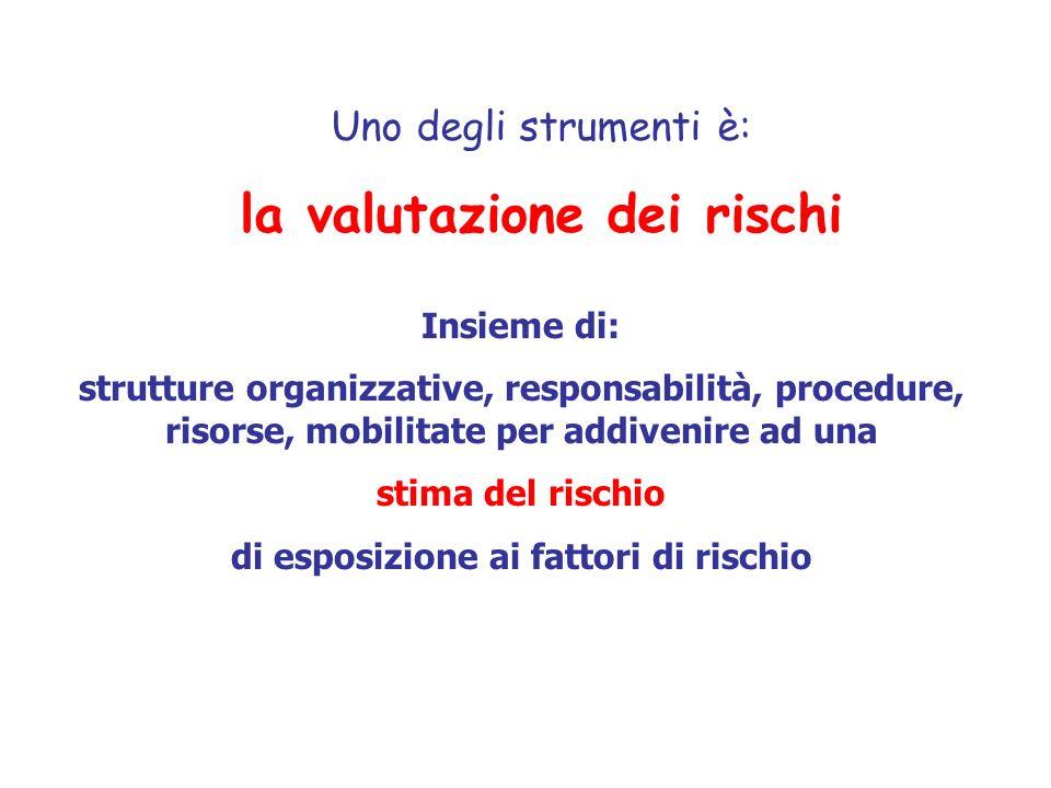 Uno degli strumenti è: la valutazione dei rischi Insieme di: strutture organizzative, responsabilità, procedure, risorse, mobilitate per addivenire ad
