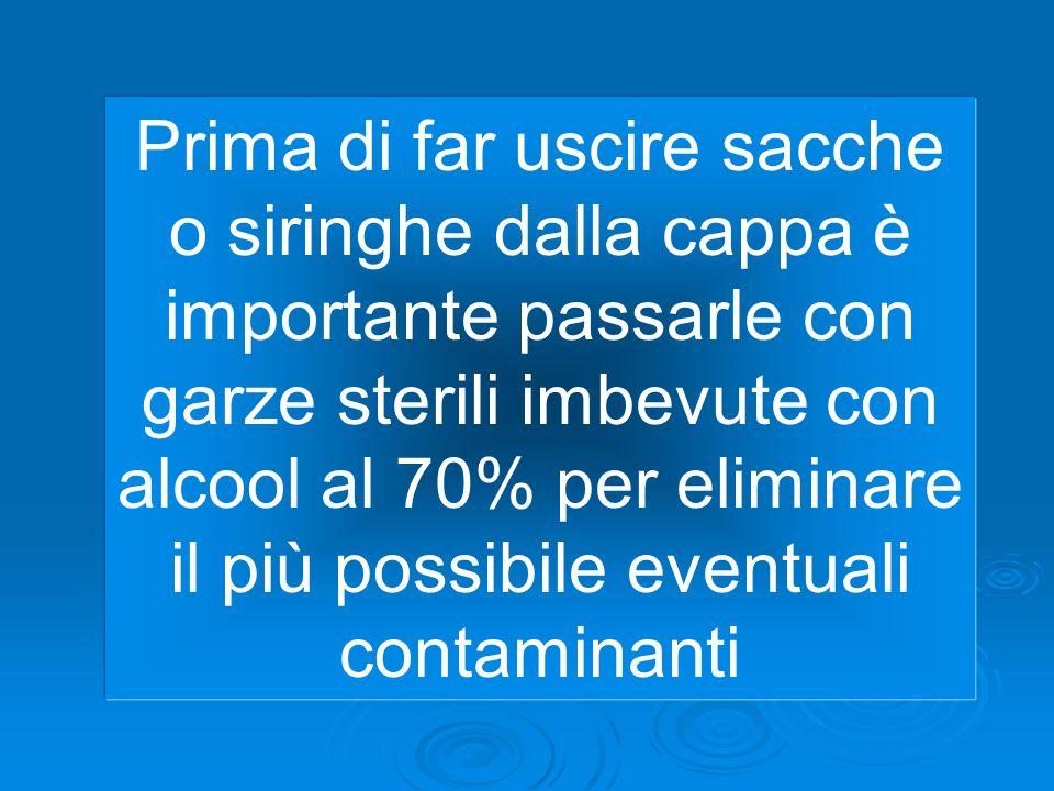 Prima di far uscire sacche o siringhe dalla cappa è importante passarle con garze sterili imbevute con alcool al 70% per eliminare il più possibile ev