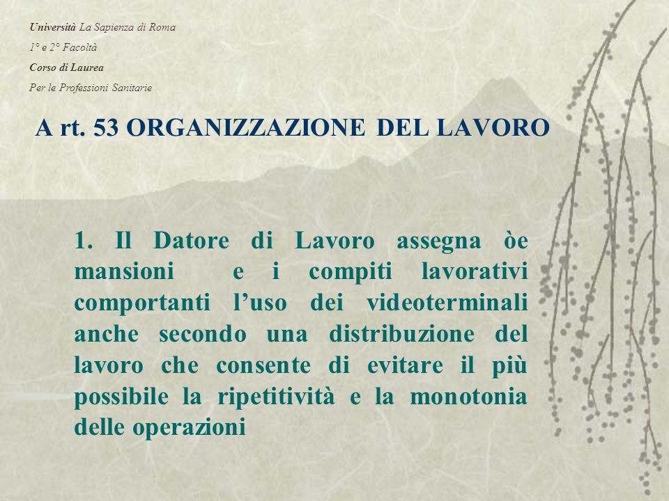 A rt. 53 ORGANIZZAZIONE DEL LAVORO 1.