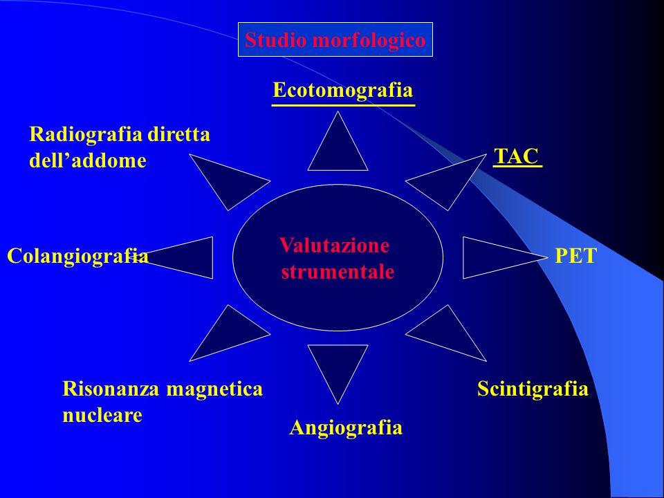 Radiografia diretta delladdome Ecotomografia Risonanza magnetica nucleare Angiografia Scintigrafia Valutazione strumentale TAC ColangiografiaPET Studi