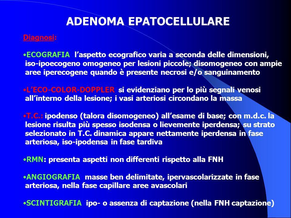 ADENOMA EPATOCELLULARE Diagnosi: ECOGRAFIA: laspetto ecografico varia a seconda delle dimensioni, iso-ipoecogeno omogeneo per lesioni piccole; disomog