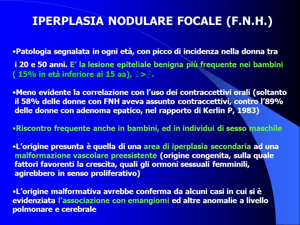 IPERPLASIA NODULARE FOCALE (F.N.H.) Patologia segnalata in ogni età, con picco di incidenza nella donna tra i 20 e 50 anni. E la lesione epiteliale be