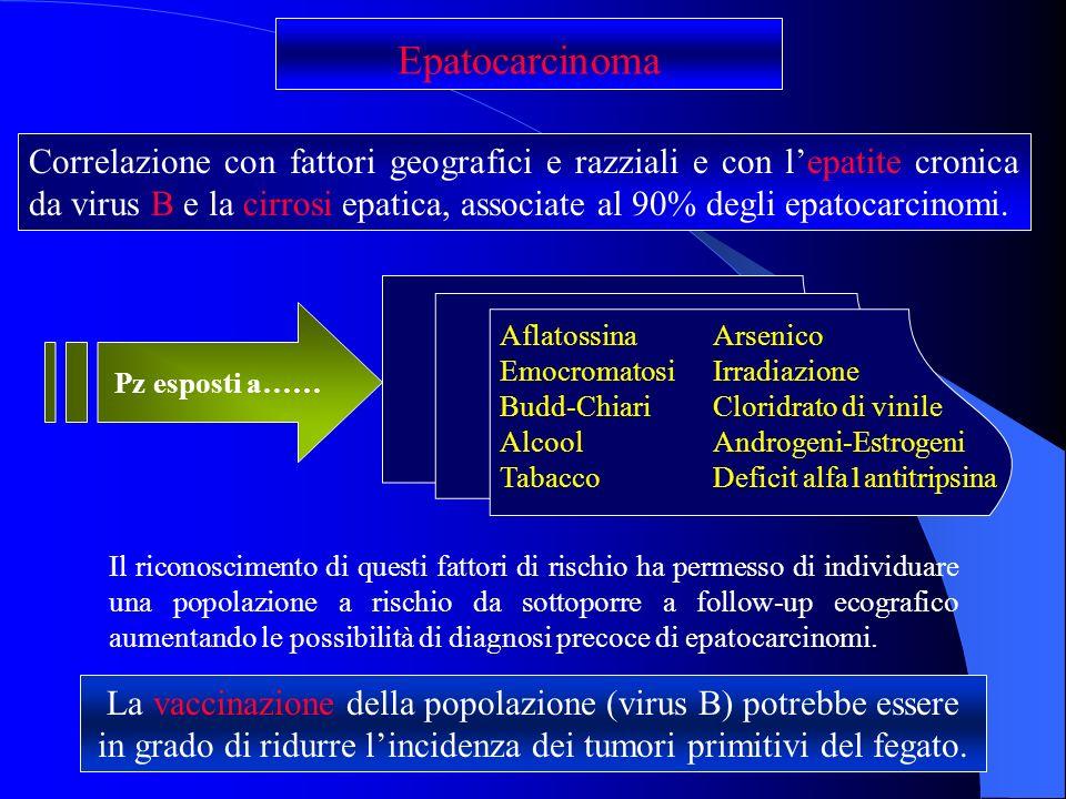 Epatocarcinoma Correlazione con fattori geografici e razziali e con lepatite cronica da virus B e la cirrosi epatica, associate al 90% degli epatocarc