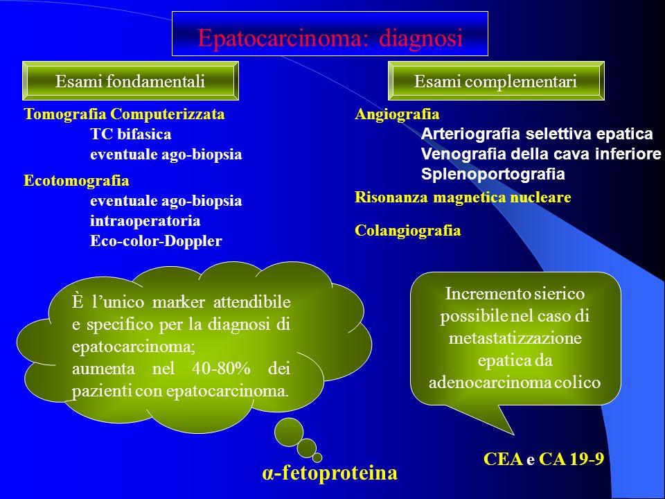 Epatocarcinoma: diagnosi CEA e CA 19-9 α-fetoproteina È lunico marker attendibile e specifico per la diagnosi di epatocarcinoma; aumenta nel 40-80% de