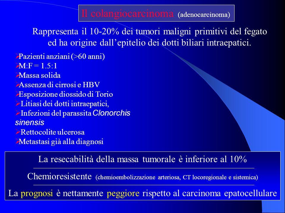 Il colangiocarcinoma (adenocarcinoma) Rappresenta il 10-20% dei tumori maligni primitivi del fegato ed ha origine dallepitelio dei dotti biliari intra
