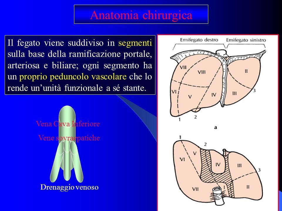 Il fegato viene suddiviso in segmenti sulla base della ramificazione portale, arteriosa e biliare; ogni segmento ha un proprio peduncolo vascolare che