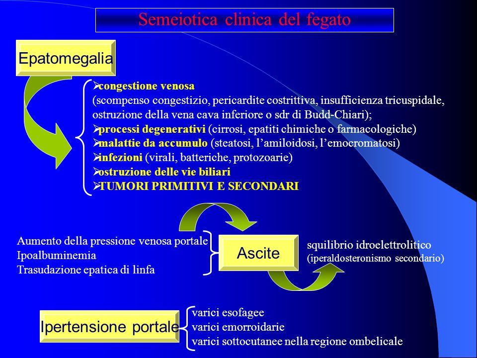 congestione venosa (scompenso congestizio, pericardite costrittiva, insufficienza tricuspidale, ostruzione della vena cava inferiore o sdr di Budd-Chi