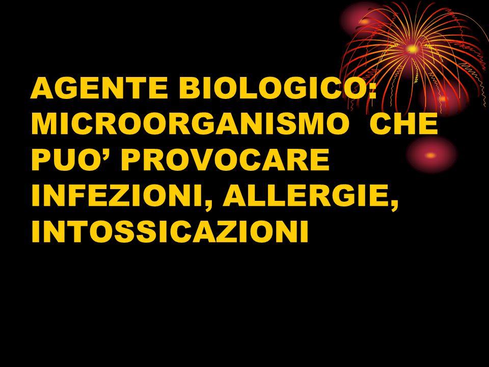 ischio BIOLOGICO AGENTE BIOLOGICO: MICROORGANISMO CHE PUO PROVOCARE INFEZIONI, ALLERGIE, INTOSSICAZIONI