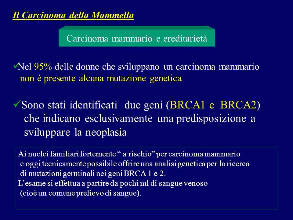 Nel 95% delle donne che sviluppano un carcinoma mammario non è presente alcuna mutazione genetica Sono stati identificati due geni (BRCA1 e BRCA2) che