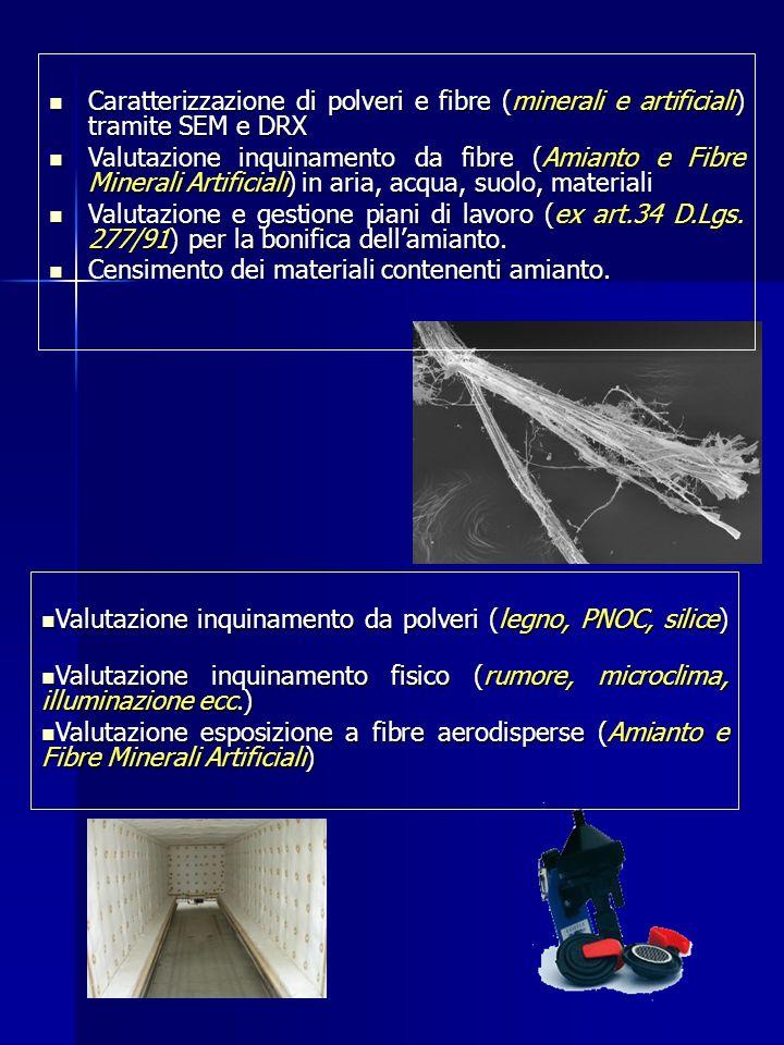 Caratterizzazione di polveri e fibre (minerali e artificiali) tramite SEM e DRX Caratterizzazione di polveri e fibre (minerali e artificiali) tramite