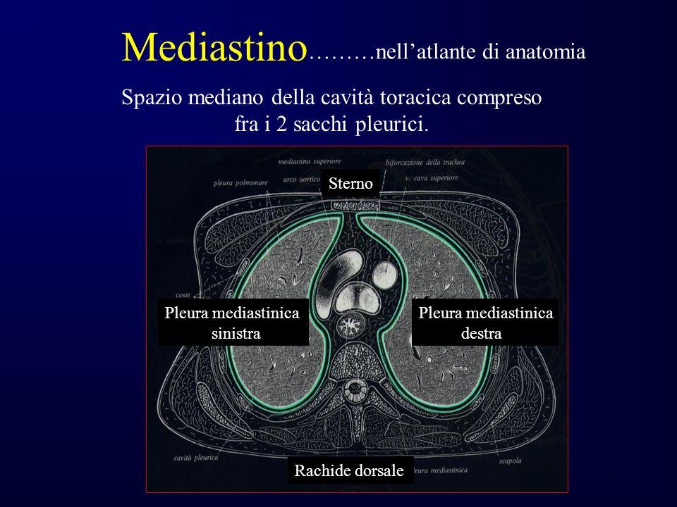 Spazio mediano della cavità toracica compreso fra i 2 sacchi pleurici.