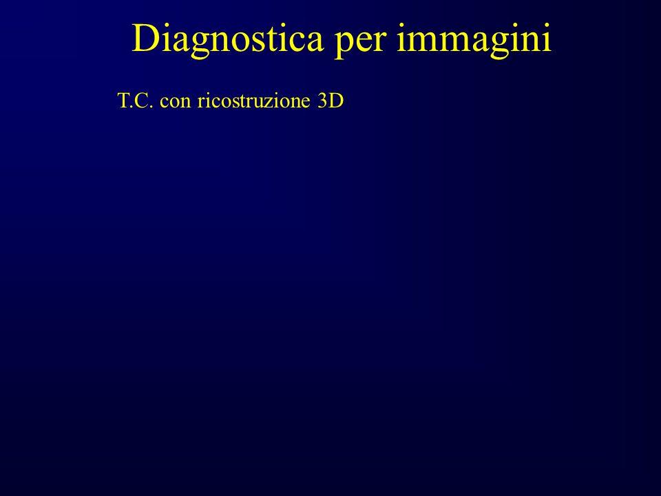 Diagnostica per immagini T.C. con ricostruzione 3D