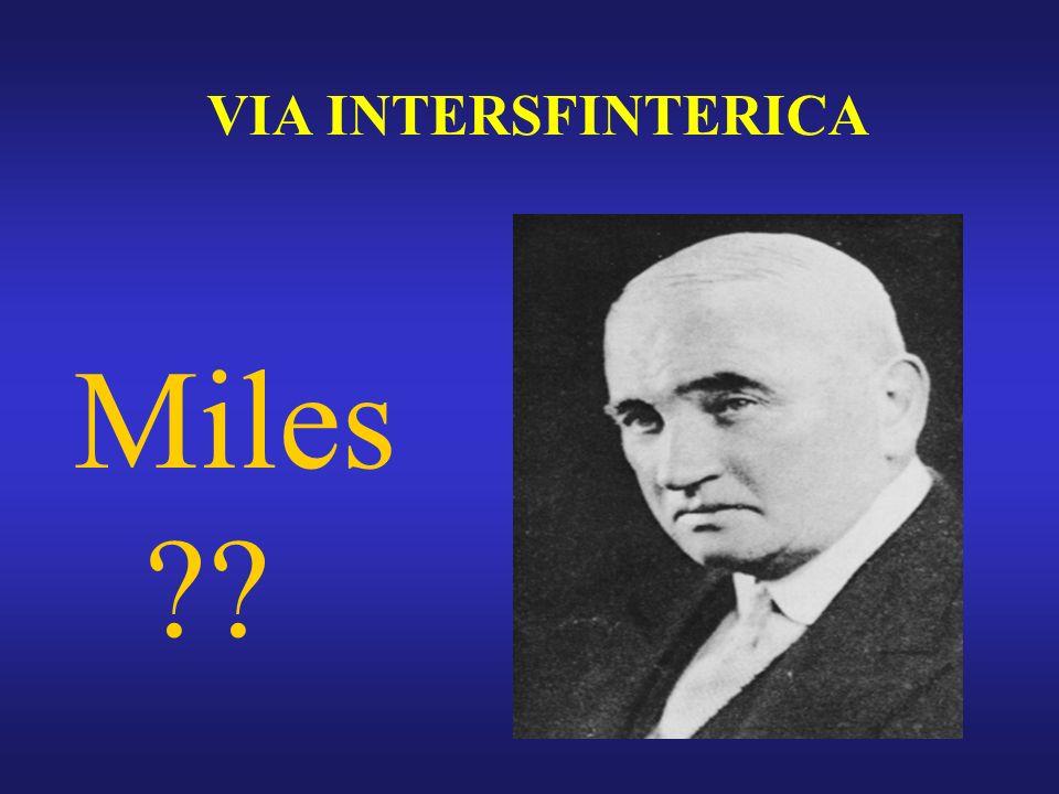 VIA INTERSFINTERICA Miles ??