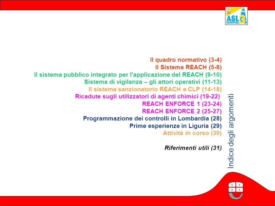 Il quadro normativo (3-4) Il Sistema REACH (5-8) Il sistema pubblico integrato per l'applicazione del REACH (9-10) Sistema di vigilanza – gli attori o
