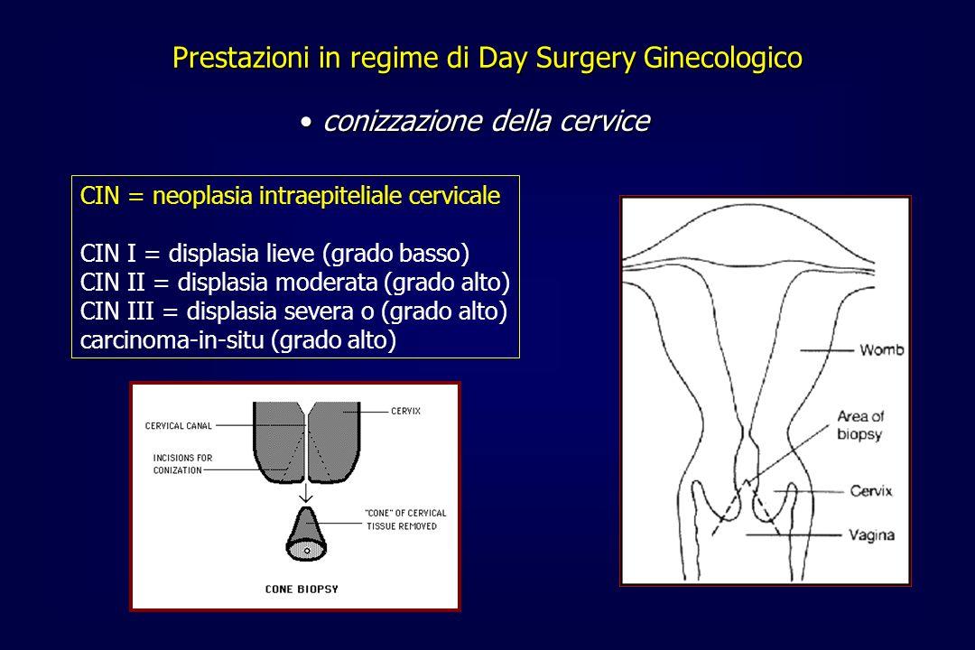 CIN = neoplasia intraepiteliale cervicale CIN I = displasia lieve (grado basso) CIN II = displasia moderata (grado alto) CIN III = displasia severa o