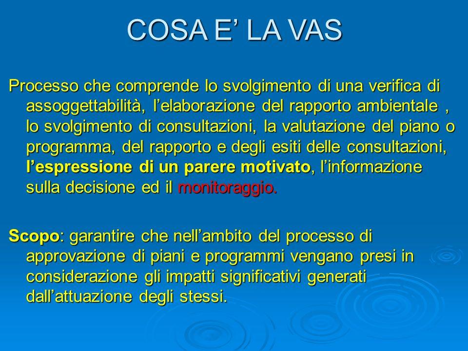 VIA statale Sono di competenza statale i progetti individuati nellAllegato II.