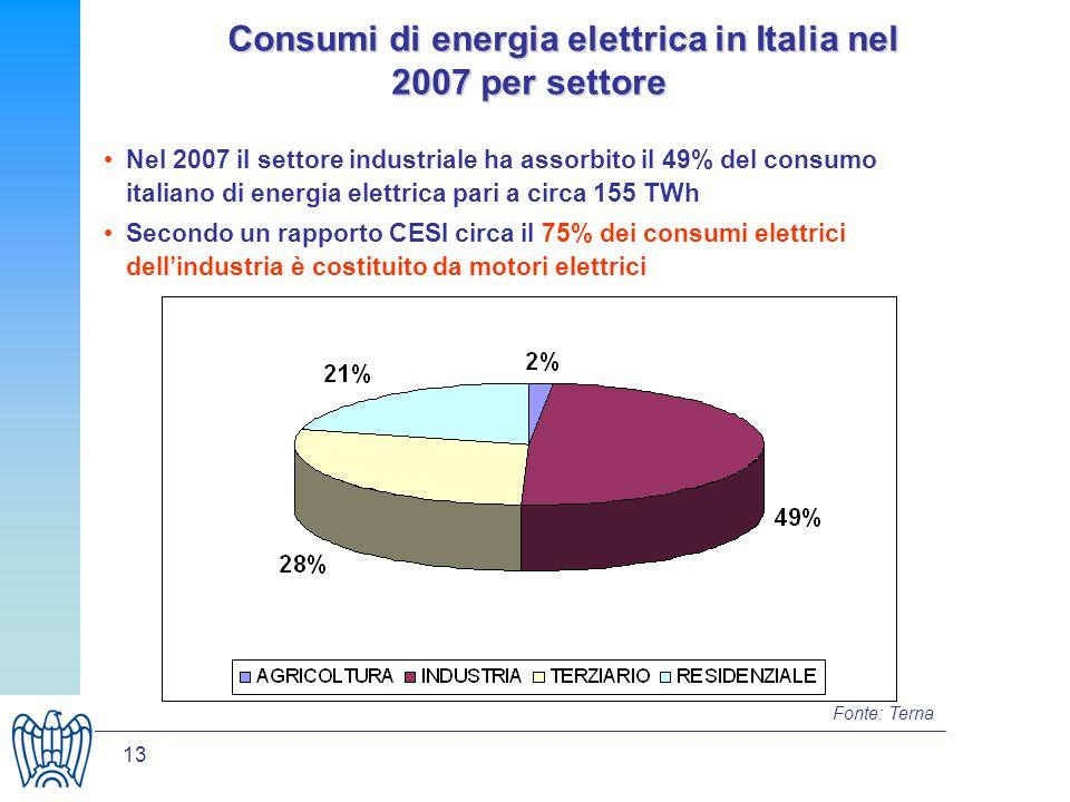 13 Consumi di energia elettrica in Italia nel 2007 per settore Consumi di energia elettrica in Italia nel 2007 per settore Nel 2007 il settore industriale ha assorbito il 49% del consumo italiano di energia elettrica pari a circa 155 TWh Secondo un rapporto CESI circa il 75% dei consumi elettrici dellindustria è costituito da motori elettrici Fonte: Terna
