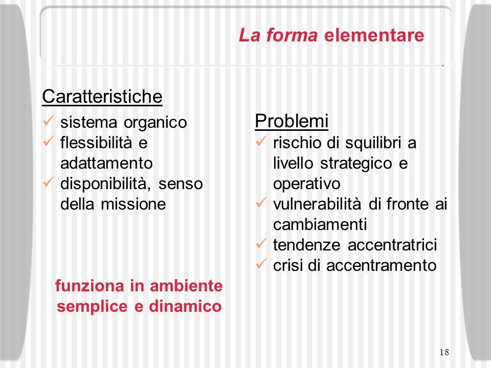 18 La forma elementare Caratteristiche sistema organico flessibilità e adattamento disponibilità, senso della missione funziona in ambiente semplice e