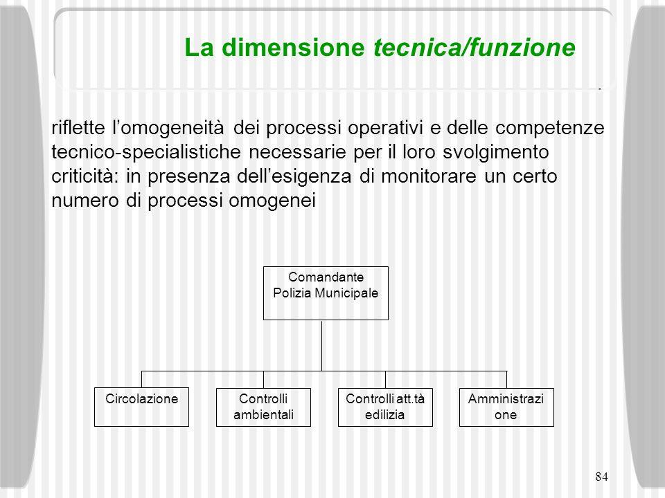 84 La dimensione tecnica/funzione riflette lomogeneità dei processi operativi e delle competenze tecnico-specialistiche necessarie per il loro svolgim