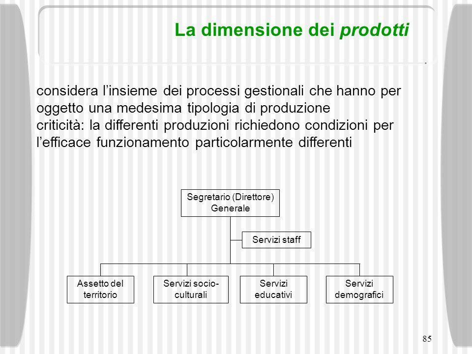 85 La dimensione dei prodotti considera linsieme dei processi gestionali che hanno per oggetto una medesima tipologia di produzione criticità: la diff