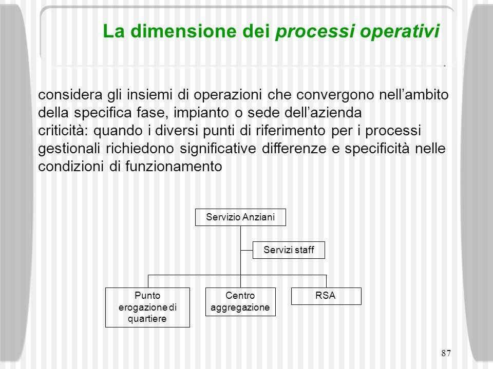 87 La dimensione dei processi operativi considera gli insiemi di operazioni che convergono nellambito della specifica fase, impianto o sede dellaziend