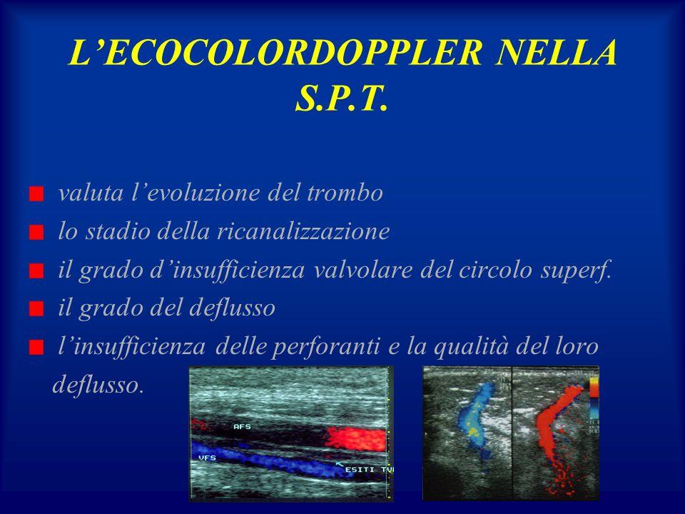 LECOCOLORDOPPLER NELLA S.P.T. valuta levoluzione del trombo lo stadio della ricanalizzazione il grado dinsufficienza valvolare del circolo superf. il