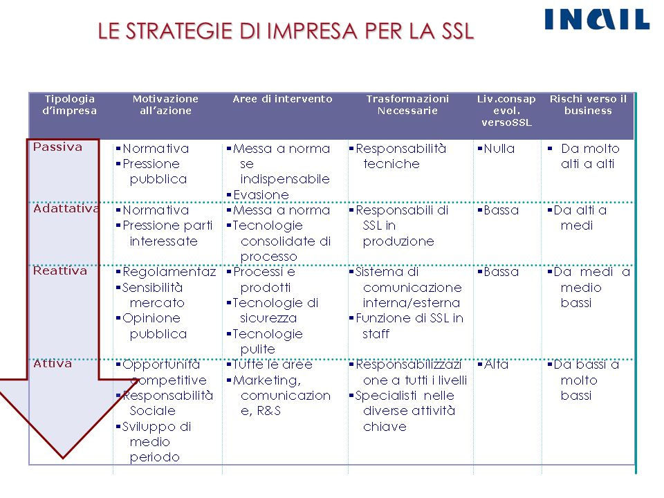 LE STRATEGIE DI IMPRESA PER LA SSL