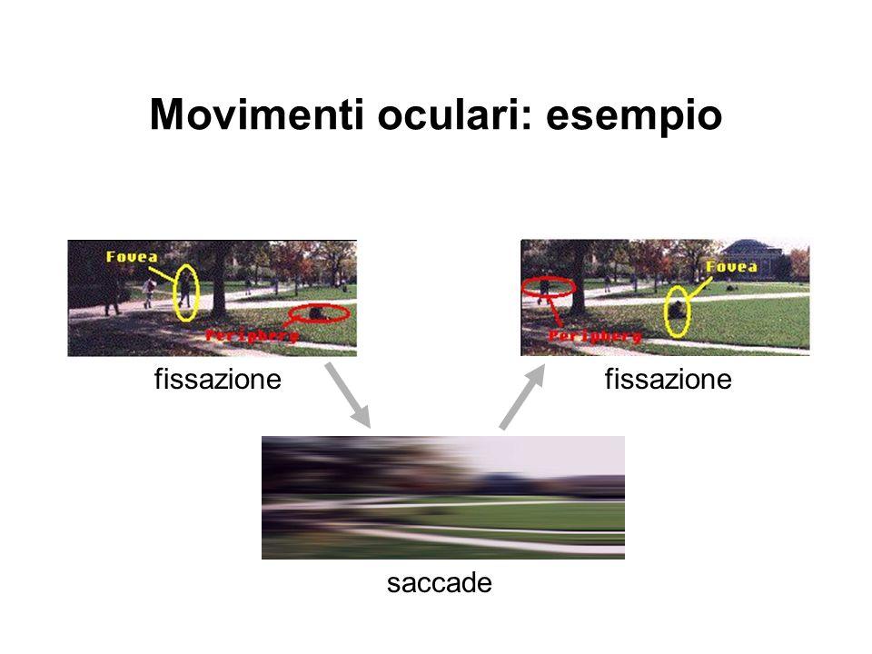Movimenti oculari: esempio fissazione saccade fissazione