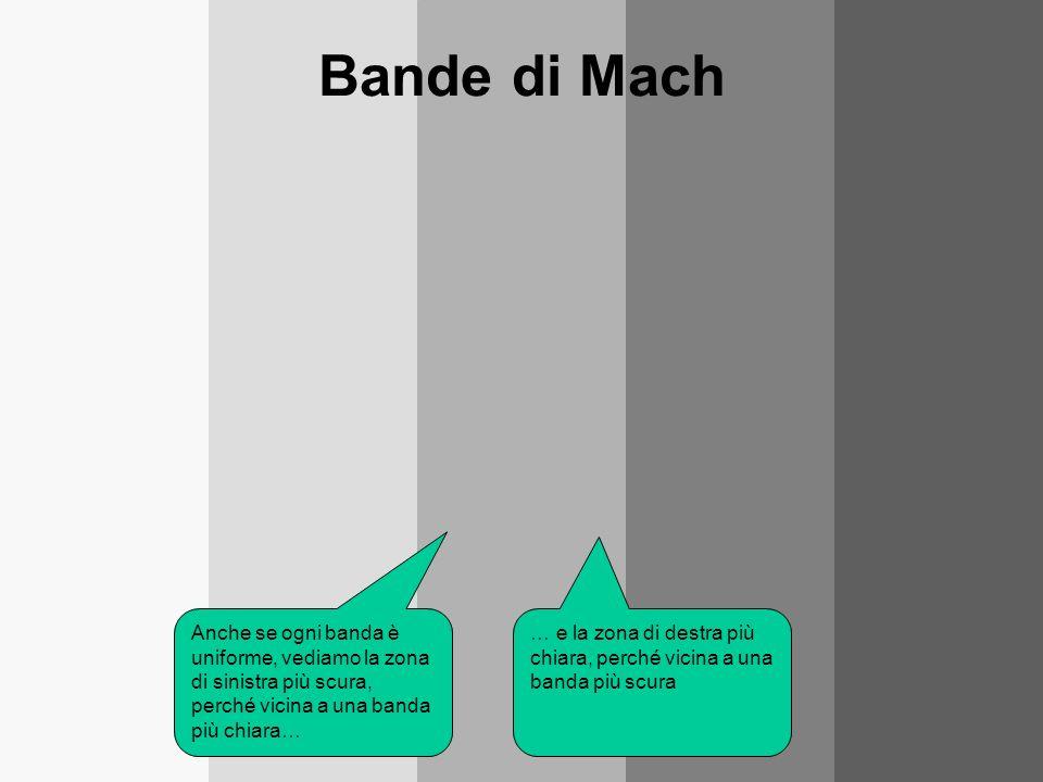 Bande di Mach Anche se ogni banda è uniforme, vediamo la zona di sinistra più scura, perché vicina a una banda più chiara… … e la zona di destra più c