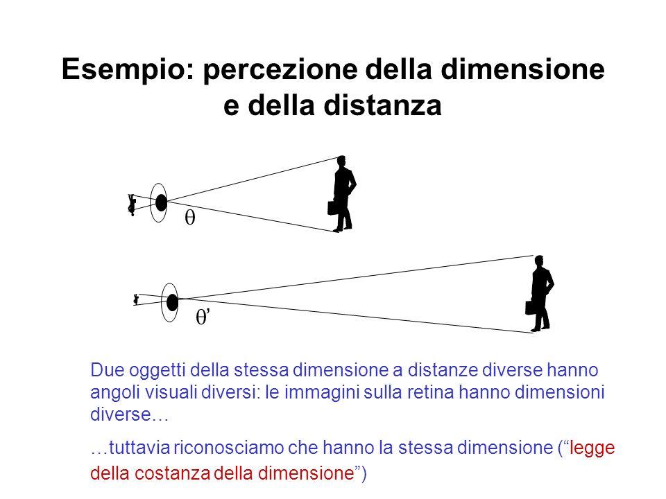 Esempio: percezione della dimensione e della distanza Due oggetti della stessa dimensione a distanze diverse hanno angoli visuali diversi: le immagini