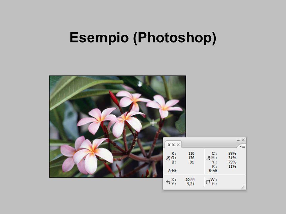 Esempio (Photoshop)