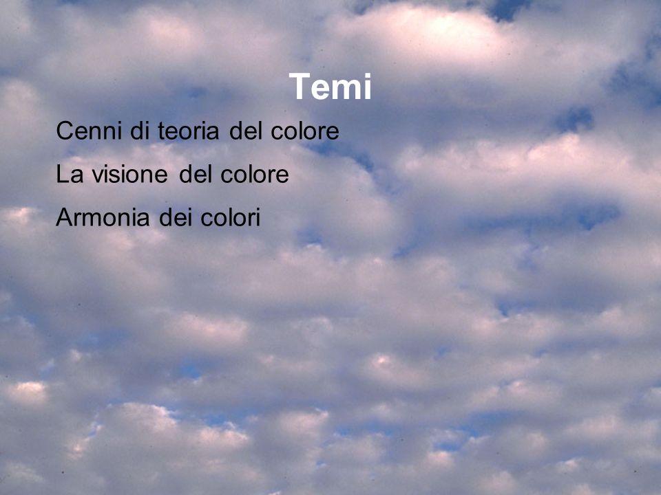 Temi Cenni di teoria del colore La visione del colore Armonia dei colori