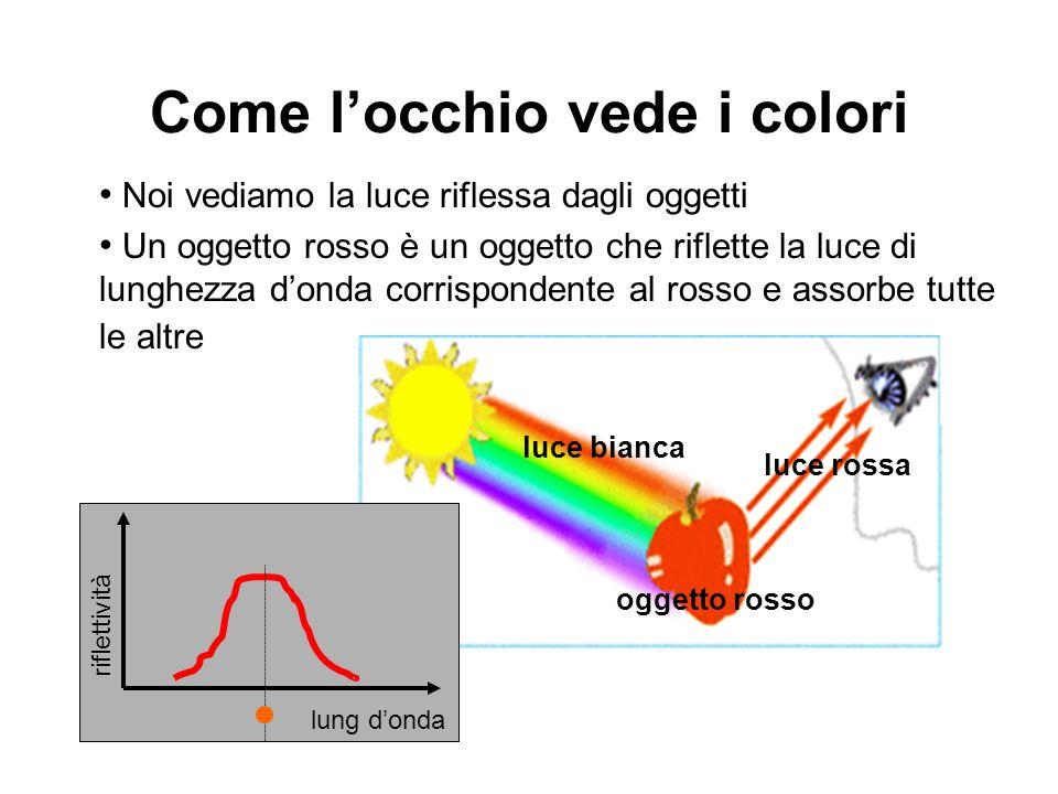 Come locchio vede i colori Noi vediamo la luce riflessa dagli oggetti Un oggetto rosso è un oggetto che riflette la luce di lunghezza donda corrispond