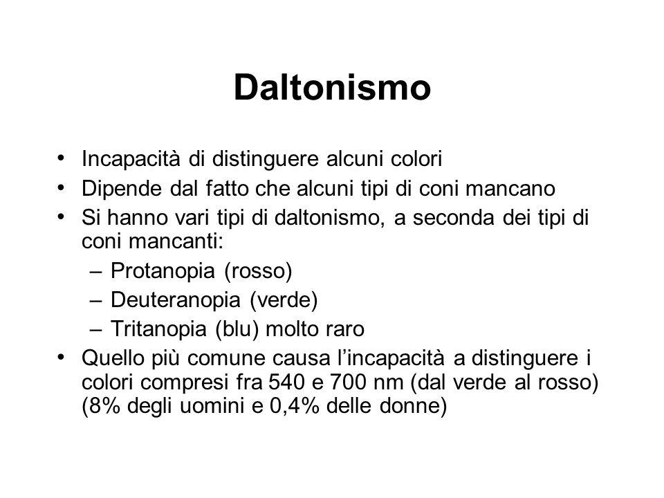 Daltonismo Incapacità di distinguere alcuni colori Dipende dal fatto che alcuni tipi di coni mancano Si hanno vari tipi di daltonismo, a seconda dei t