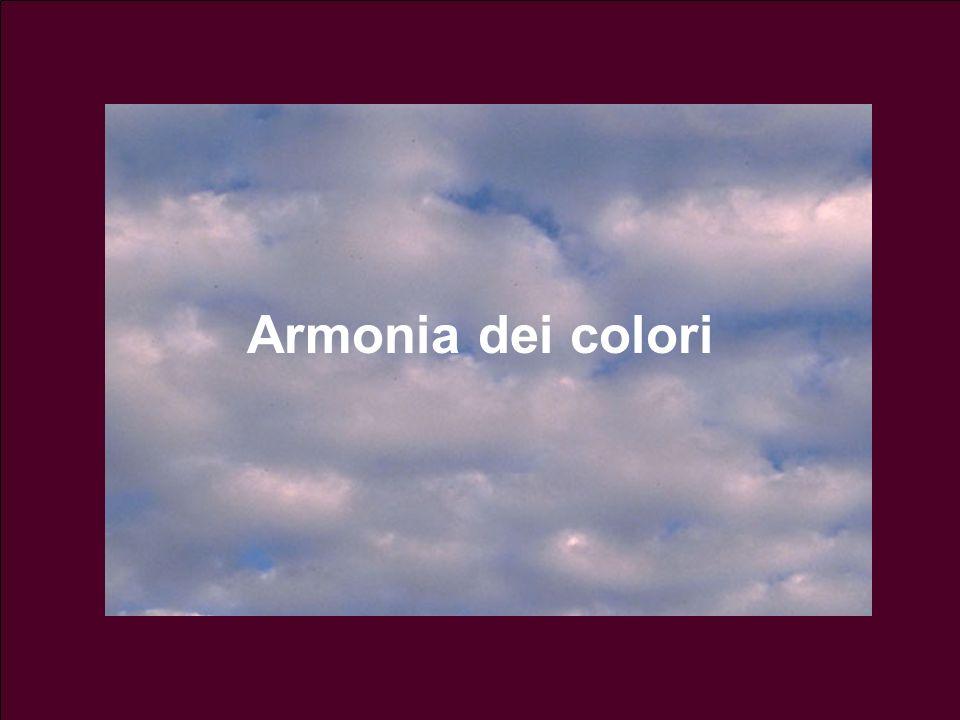 Armonia dei colori