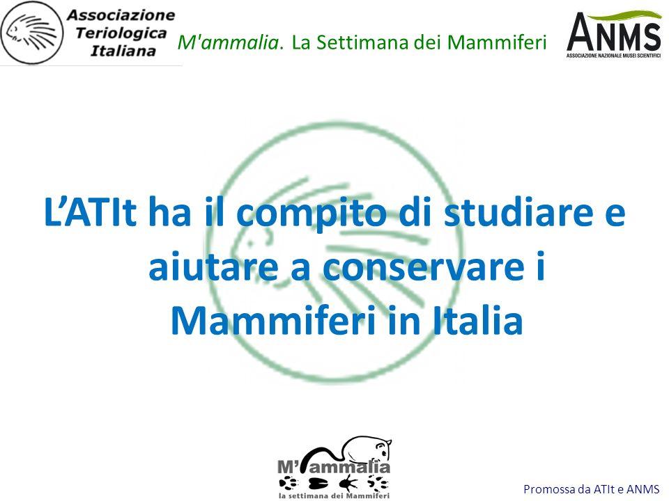Promossa da ATIt e ANMS LATIt ha il compito di studiare e aiutare a conservare i Mammiferi in Italia M'ammalia. La Settimana dei Mammiferi