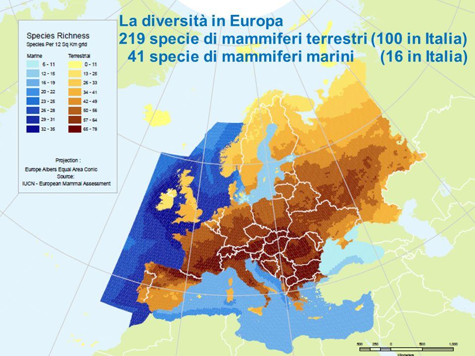 Promossa da ATIt e ANMS M'ammalia. La Settimana dei Mammiferi La diversità in Europa 219 specie di mammiferi terrestri (100 in Italia) 41 specie di ma