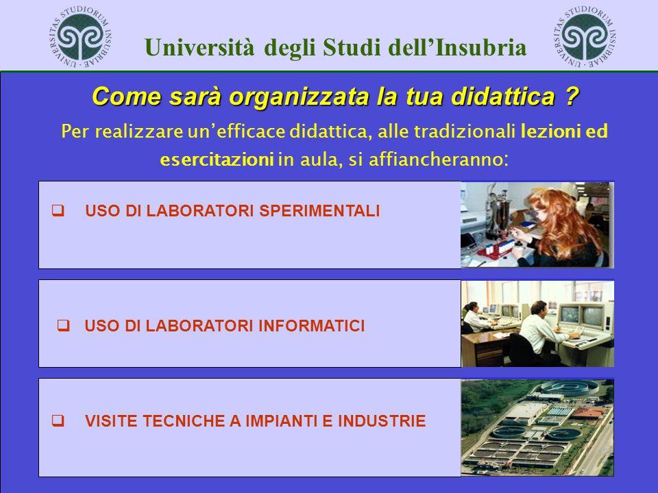 Università degli Studi dellInsubria Come sarà organizzata la tua didattica ? Per realizzare unefficace didattica, alle tradizionali lezioni ed esercit