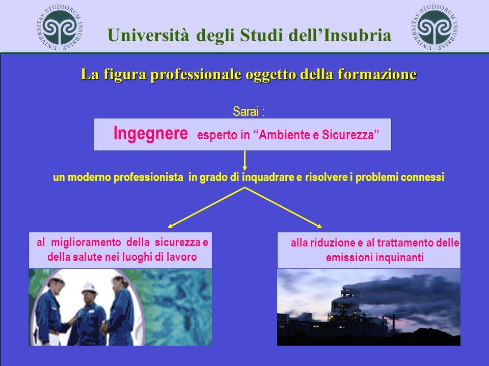 Università degli Studi dellInsubria La figura professionale oggetto della formazione Sarai : Ingegnere esperto in Ambiente e Sicurezza un moderno prof
